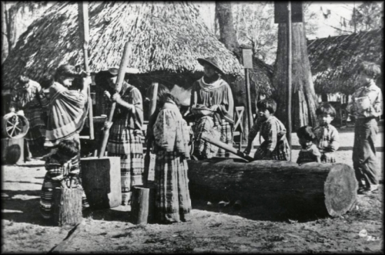 From the American Philosophical Society archives, twentieth-century Seminole women grinding corn.